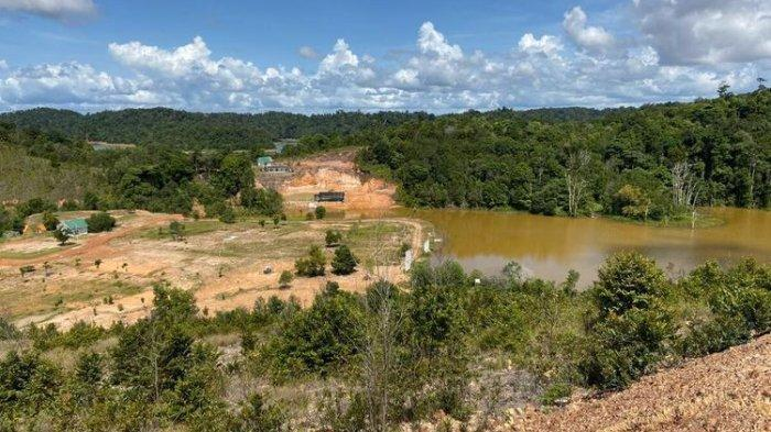 Forest Conversion and Land Clearing in Batam Threaten the Environment
