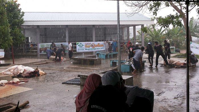 Kurangi Jumlah Kupon, Kamis Masjid Agung Lanjutkan Penyembelihan Hewan Kurban