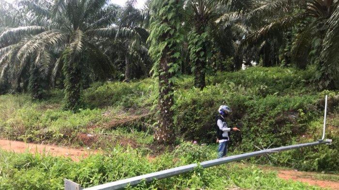Pencurian di Bintan Makin Menjadi, Lampu PJU di Tirta Madu Hilang Digasak Maling. Foto kondisi lampu PJU di Kecamatan Gunung Kijang.