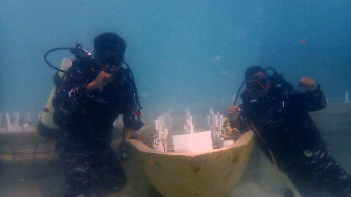 HUT RI - Penanaman fragmen terumbu karang pada kegiatan Coral Reef Garden (CRG) di Kampung Bahari Nasional (KBN) di Pulau Temawan, Desa Batu Belah, Kecamatan Siantan Timur, Anambas, Kepri, Selasa (17/8/2021). Kegiatan antara Lanal Tarempa bersama LKKPN Pekanbaru di Tarempa ini digelar untuk memperingati HUT RI ke-76.