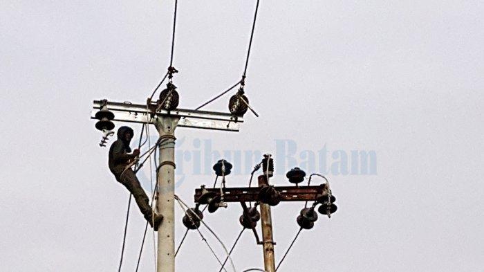 Kabel Listrik Jalan Batuampar-Sei Panas Dicuri,  Kepala Dinas Bina Marga Lapor Polisi