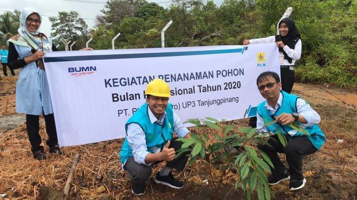 Dukung Bulan K3 Nasional, PLN Tanjungpinang Tanam 200 Bibit Buah-Buahan