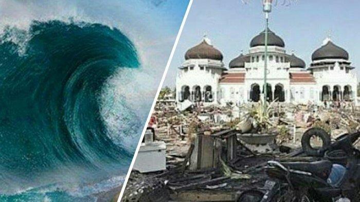 Kisah Tsunami Aceh 2004 Selamat Dari Gelombang Tsunami Bertemu Ular Raksasa Di Atas Pohon Tribun Batam