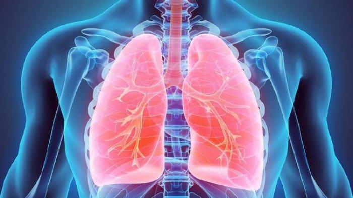 7 Bahan Alami Ini Berkhasiat Membersihkan Paru-paru, Termasuk Rutin Minum Kopi