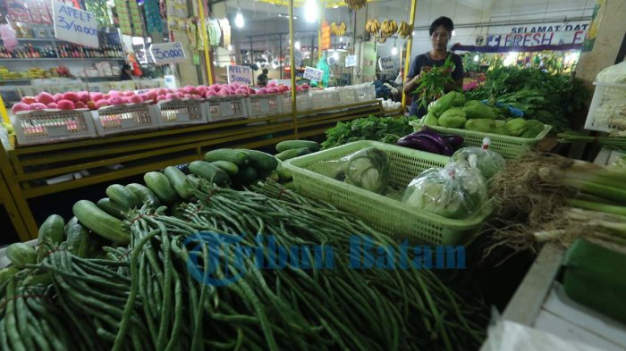 Emak Emak di Pasar Botania Batam Enggak Cerewet Lagi, Harga Santan dan Sayuran Kini Turun Harga