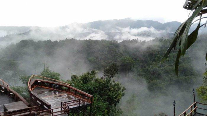 Pemandangan di alam luas nan menghijau di objek wisata Bekancan River