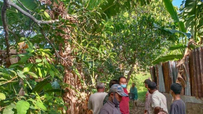 PENGAKUAN Saksi Mata yang Pertama Kali Melihat Jasad Mbah Arjo Tergantung di Pohon Nangka