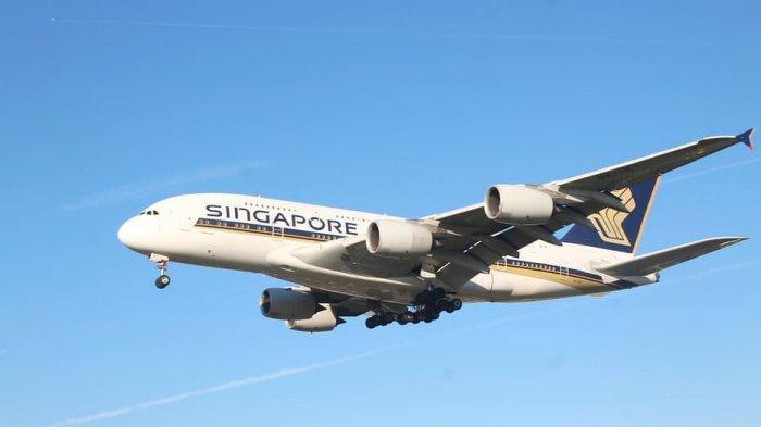 Temukan Sekrup Dalam Sup, Singapore Airlines Minta Maaf ke Penumpang First Class
