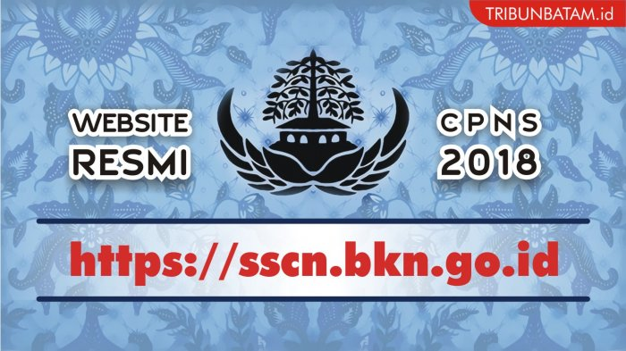 Panduan Cara Mendaftar di sscn.bkn.go.id yang Dibuka 19 September. Kenali Juga Istilah-istilah Ini