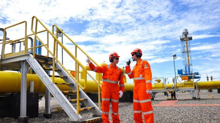 PGN Optimalisasi Pemanfaatan Gas Bumi di Proyek Strategis Gas Bumi Nasional