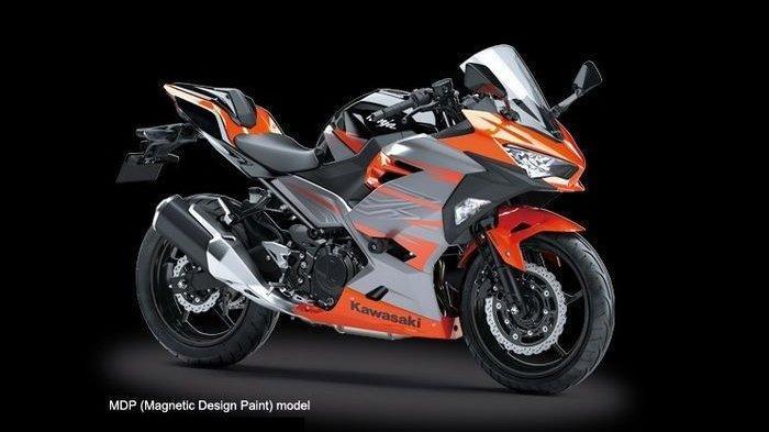 Kawasaki Ninja 250 Rilis 2 Pilihan Warna Baru, Cek Disini