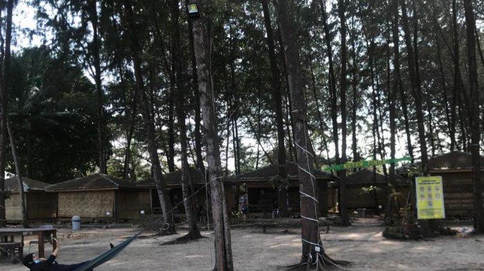 Indah dan Menyegarkan Pengunjung, Ini Suasana Objek Wisata Hutan Pinus di Bintan