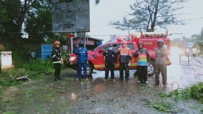 Pohon Tumbang Dekat SMPN 4 Batam Sempat Tutup Jalan, Azman: Waspada Cuaca Ekstrem
