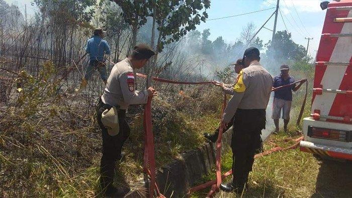 Ada 163 Titik Kebakaran Lahan di Bintan, Petugas Damkar Kewalahan Memadamkan Api