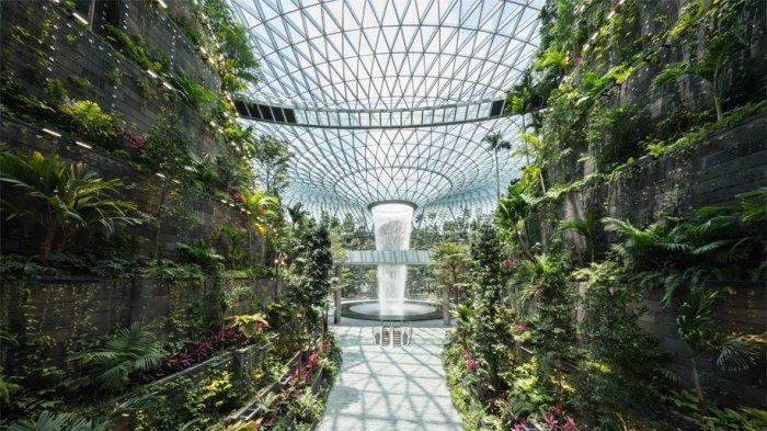 5 Destinasi Wisata Terunik di Changi Airport Singapura, Suguhkan Taman Kupu-kupu