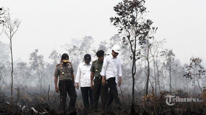 Gara-gara Asap, Jokowi Jadi Malu Mau ke Singapura dan Malaysia