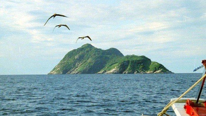 Ngeri! Pulau Ini Dihuni Spesies Ular Paling Mematikan Sejagat, Racunnya Lelehkan Daging Manusia!