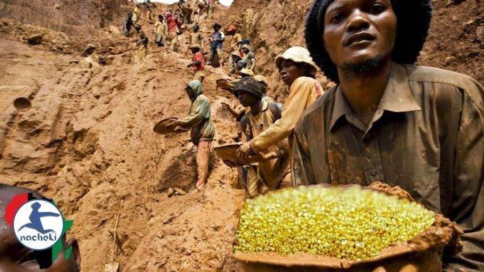 Heboh Gunung Emas di Kongo, Pemerintah Tutup Setelah Viral, Ribuan Orang Gali Emas dengan Sekop