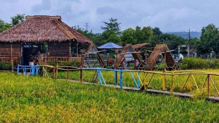Sabin Caffe, kafe di Desa Tanjungrejo, Kudus, Jawa Tengah yang berada di tengah persawahan