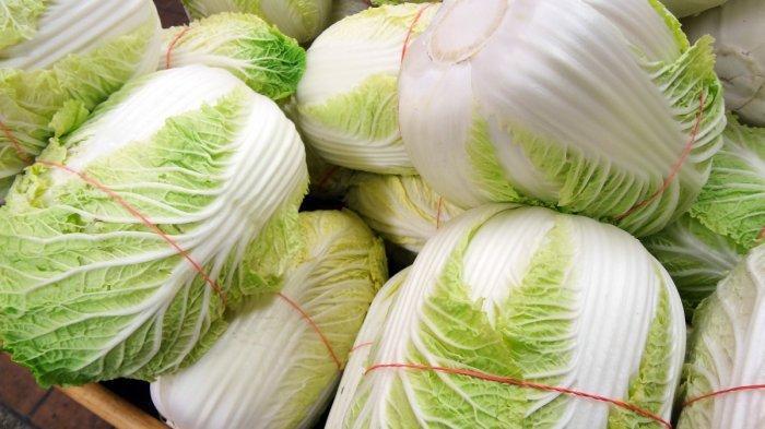 6 Jenis Sayur yang Sebaiknya Dihindari Saat Sahur, bisa Menyebabkan Asam Urat hingga Kembung