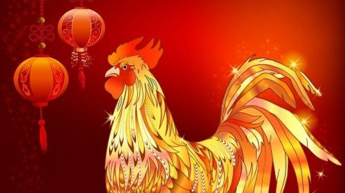 Shio ayam tidak beruntung di Tahun Kerbau Logam