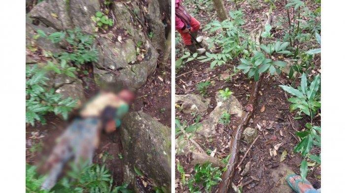 ilustrasi Suardi alias Udding, warga di Kabupaten Bone, Sulawesi Selatan (Sulsel) ditemukan tak bernyawa di Hutan Lasebbo, Kabupaten Bone, Provinsi Sulawesi Selatan, Kamis (16/7/2020)
