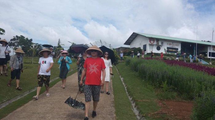 Dampak Virus Corona, Arus Lalu Lintas WNA di Bintan Sepi, Imigrasi: Hingga Awal Maret Baru 19 Orang