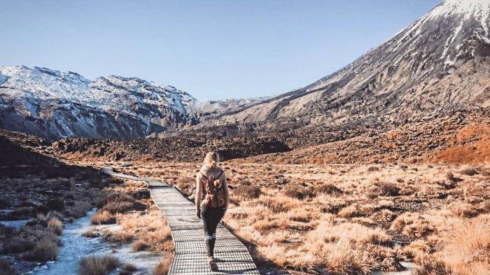 Daftar 3 Warisan Dunia UNESCO di Selandia Baru, Indahnya Kepulauan Sub Antartika