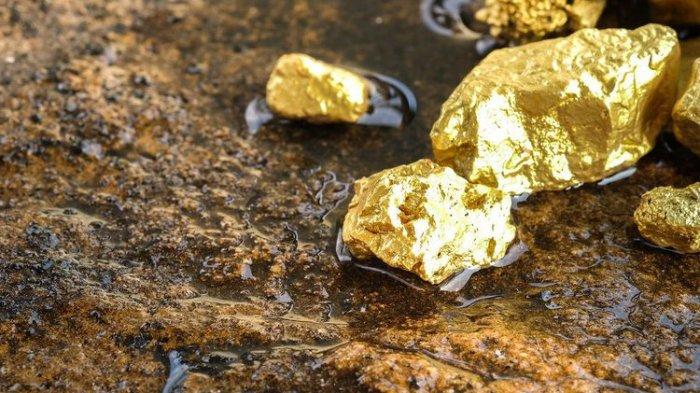 HEBOH Tonton Video Penemuan Gunung Emas, Warga Terus Menggali Pamer Bongkahan Bercahaya Kuning