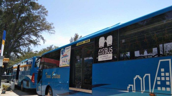Pendapatan Bus Trans Batam Turun 50 Persen Selama Pandemi Covid-19, Cuma 50 Unit Beroperasi