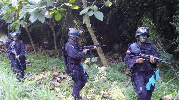 Hebat! Inilah Tontaipur Kostrad, Pasukan Elite TNI AD! Jago Kubur Diri Pakai Pelepah Daun Pepaya!