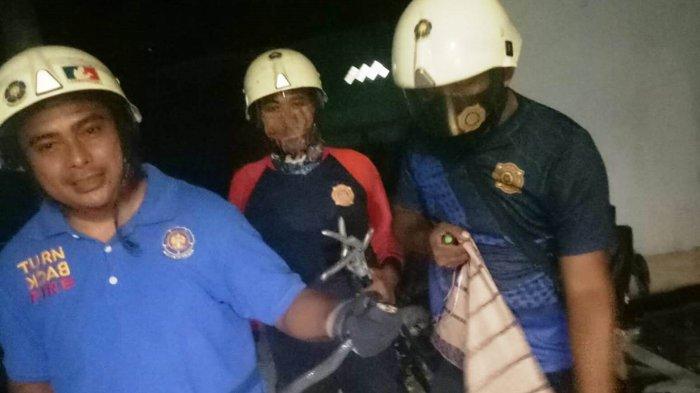Ular Kerap Masuk Permukiman Bintan, Warga Kaget Temukan Kobra di Depan Rumah