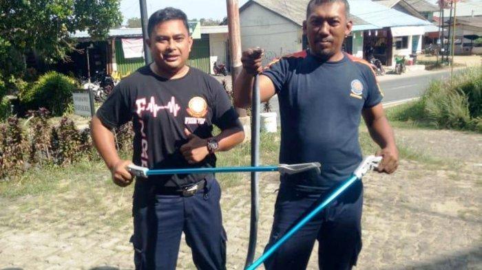 Warga Tanjunguban Selatan Heboh, Ular Kobra 1,5 Meter Masuk Rumah Warga di Bintan