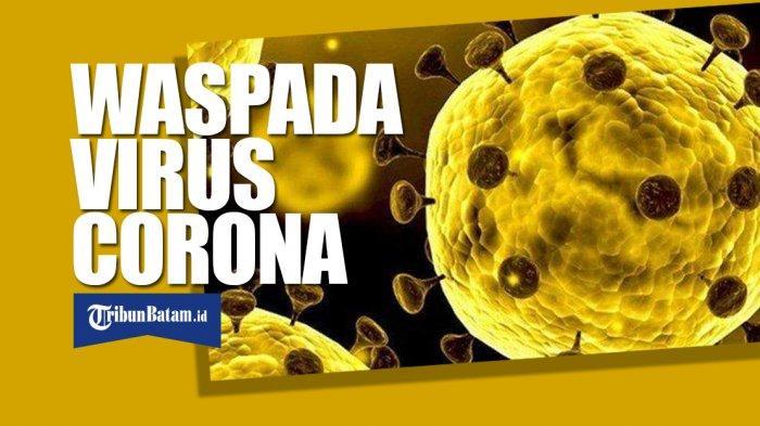 Cegah Virus Corona Masuk Karimun, Imigrasi Perketat Pengawasan Warga Asing