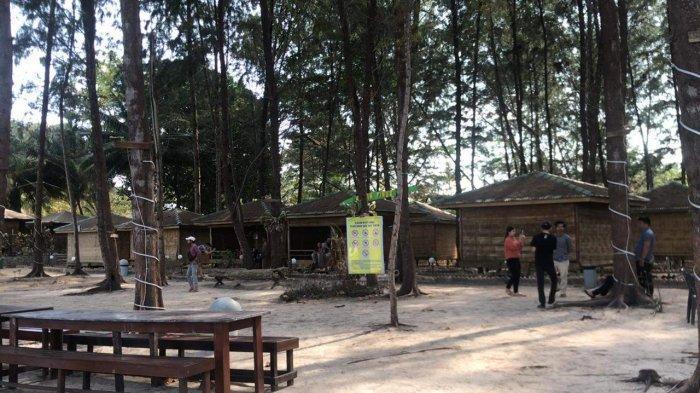 Wisata Hutan Pinus yang terletak di dalam Bintan Blue Coral (BBC) di pinggir jalan pantai Desa Teluk Bakau, Kabupaten Bintan, Provinsi Kepri.
