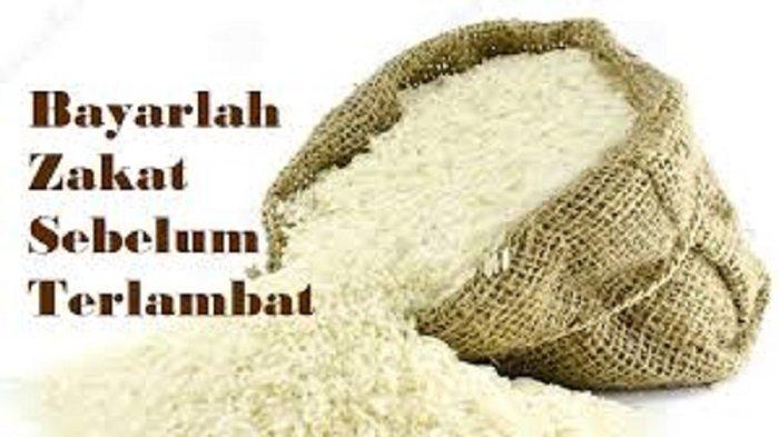 Apa Itu Zakat Fitrah? Inilah Golongan yang Wajib Membayar Zakat di Bulan Ramadhan