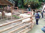 15052020_taman-safari-indonesia-cisarua-bogor.jpg