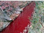 16112019_sungai-di-korea-selatan-mendadak-penuh-darah.jpg