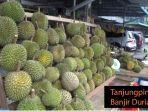 2006_durian-di-tanjungpinang.jpg