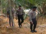 20112020_polisi-menyisir-lahan-kebun-sawit-cari-3-anak-hilang-di-langkat.jpg