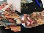 24-7-2020-viral-uang-dimakan-rayap-dibawa-ke-bank-indonesia.jpg