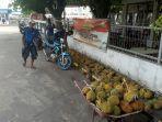 2607_durian_anambas.jpg