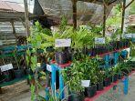 3003lomba-tanaman-obat-keluarga.jpg