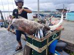 aktivitas-nelayan-di-pelabuhan-pering-natuna-kepri.jpg