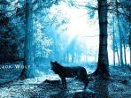 arti-mimpi-melihat-serigala.jpg