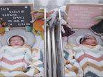 arti-nama-bayi-kembar-pasangan-syahnaz-dan-jeje-govinda.jpg