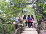 avj-mangrove_20180513_195302.jpg