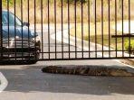 buaya-sepanjang-3-meter-di-gerbang-sebuah-sekolah-di-florida-as.jpg