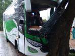 bus-tabrak-pohon_20180501_113328.jpg