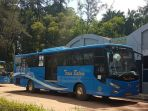 bus-trans-batam_20180610_185939.jpg